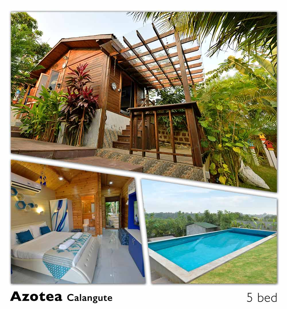 luxury party pool bungalow villa calangute